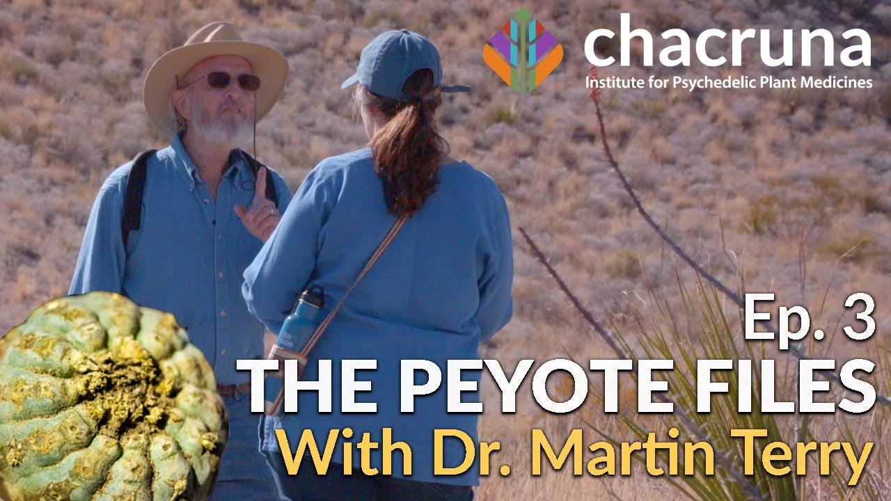 The Peyote Files Episode 3