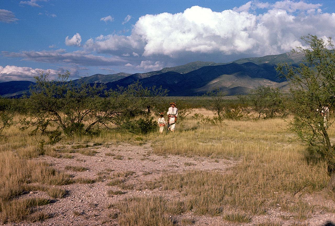 Yauxali and his son walk in Wirikuta - Photograph ©Juan Negrín 1978-2018