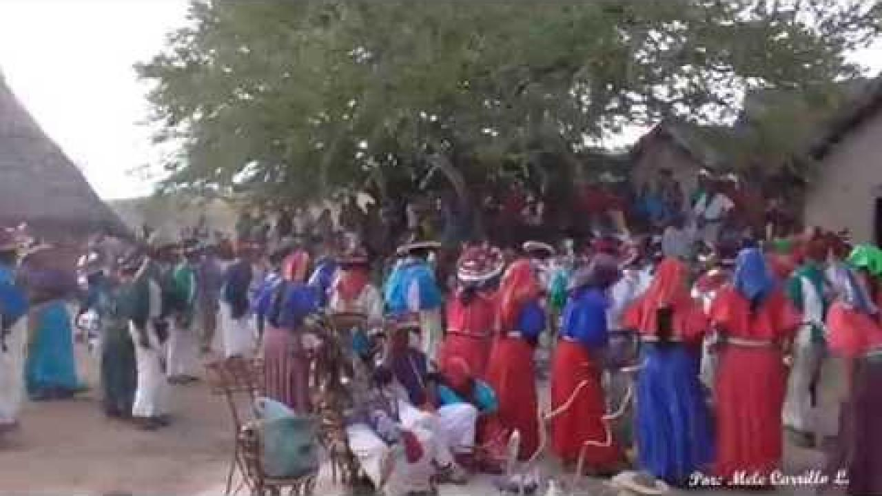 Hikuri Neixa (Danza del Peyote) III