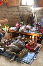 Altar for the sacrificed deer in Wirikuta ~ Photo ©Andrés Guadarrama 2021