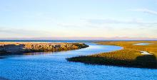 The Vizcaíno Biosphere Reserve in Baja California Sur has four active mining projects.